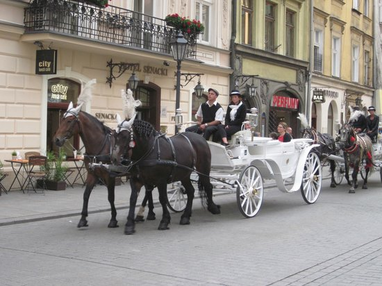 Senacki Hotel: Front of hotel