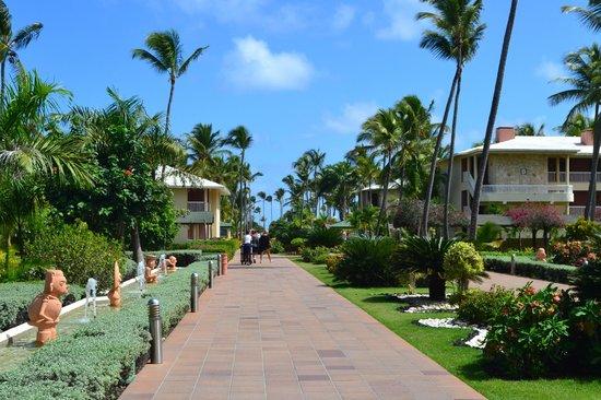 Sirenis Punta Cana Resort Casino & Aquagames: Main Walkway to Pool and Beach