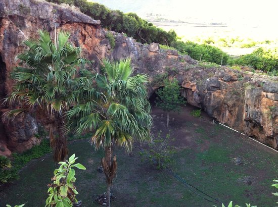 Makauwahi Cave Reserve : View from the top