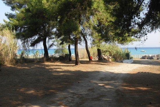 Hanioti Village Resort: Zejście na plażę