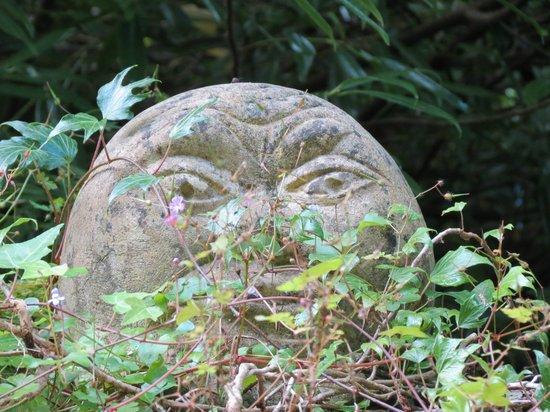 Plas Cadnant Hidden Gardens: Stone face