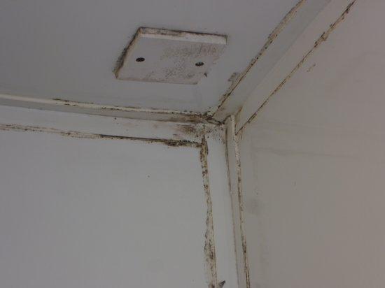Belfast International Youth Hostel : Die Tür zur Dusche wurde in drei Tagen kein einziges Mal von uns geöffnet.