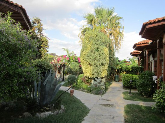 Hotel Asur /Assyrian Hotel: Hotel Grounds