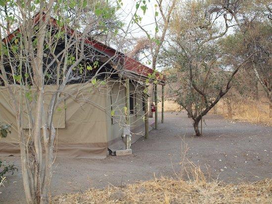 Tshima Bush Camp: Tent 4