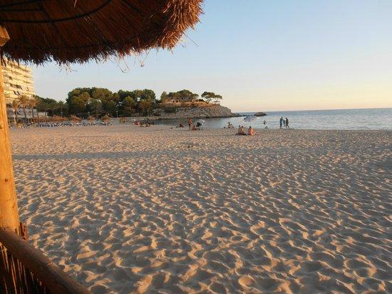 Ran de Mar Hotel/Apartments: Playa de acceso directo desde el hotel