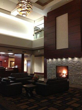Chateau Nova Yellowhead: Fireplace