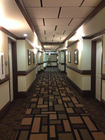 Chateau Nova Yellowhead: Hallway