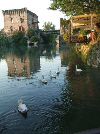 Agriturismo Ca Del Gal : Borghetto sul Mincio - nei dintorni