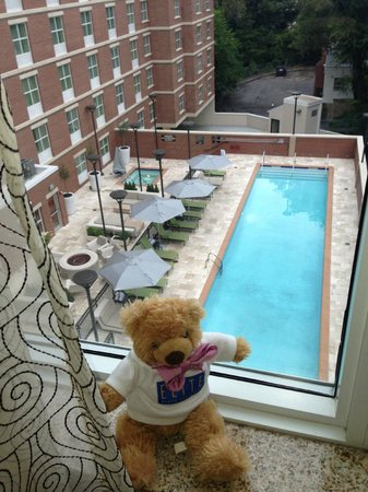 Homewood Suites by Hilton Atlanta Midtown : View of Pool