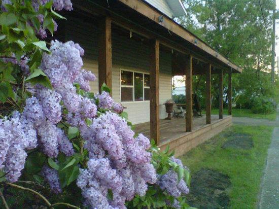 Wilderness Gate Lodge: Lilacs encase the front verandha