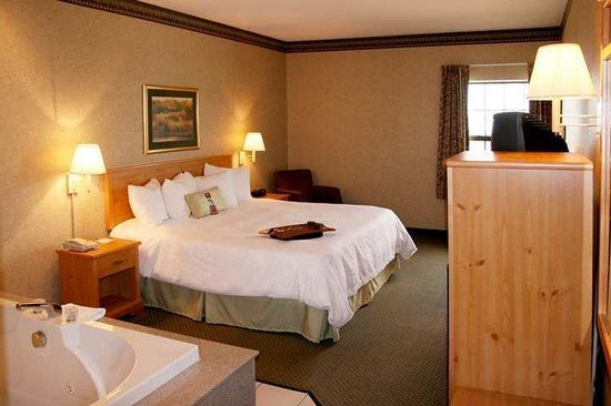 Hampton Inn & Suites Petoskey: Guest Room