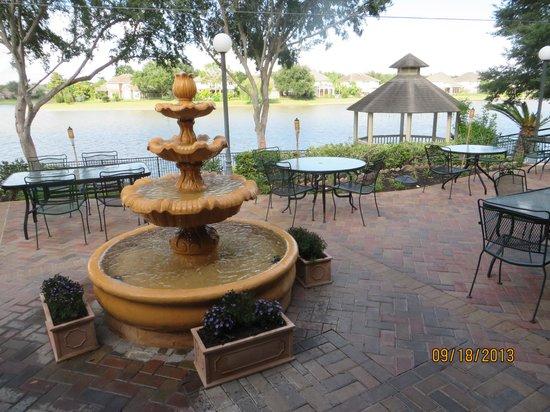 Los Gallitos Mexican Cafe Sugar Land Menu Prices Restaurant Reviews Tripadvisor