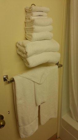 Country Inn & Suites By Carlson, Winnipeg, MB : Plenty of towels
