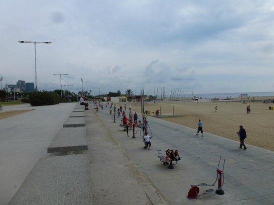 Holiday Inn Express: La playa cerca del hotel.