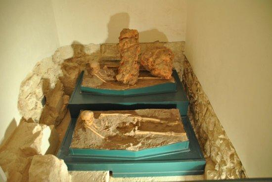 Museo Civilta Preclassiche della Murgia Meridionale