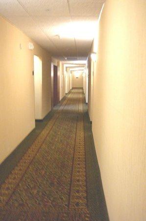 Drury Inn & Suites Cincinnati Sharonville: hallway