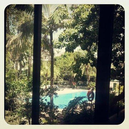 Hotel Colon Rambla: widok z okna pokoju na hotelowy basen