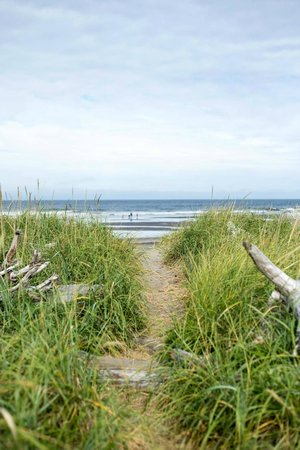 Cape Disappointment State Park: Pathway from campsite to beach