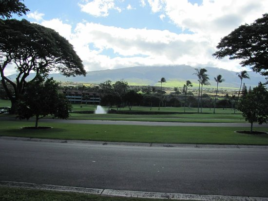 Westin Maui Resort And Spa: golf course infront of resort