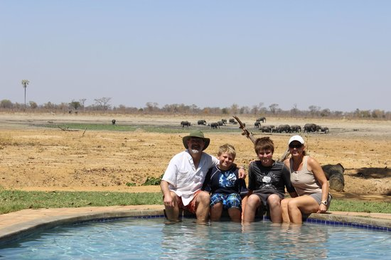 Wilderness Safaris Davison's Camp: Hanging out by the pool between game drives with a my pachyderm possy in the background