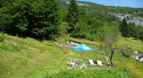 La Chouette a l'Heure du Pinson: La vue du jardin