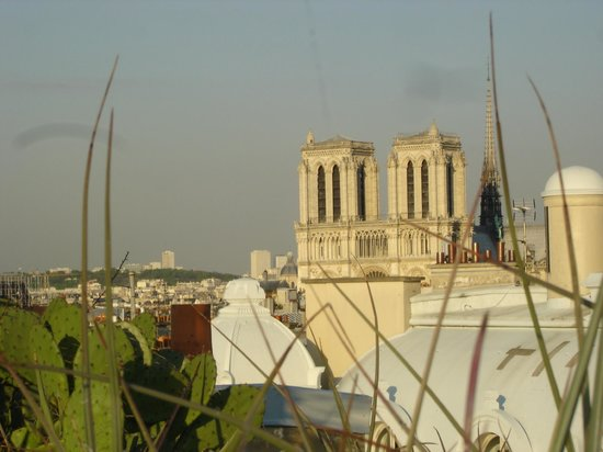 Holiday Inn Paris - Notre Dame: Notre Dame. View from roof of the hotel.