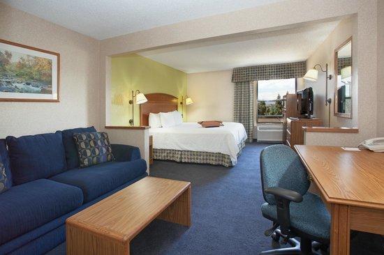 Hampton Inn Denver North / Thornton : One King Room
