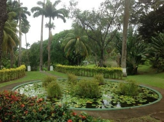 Botanical Gardens: green and clean