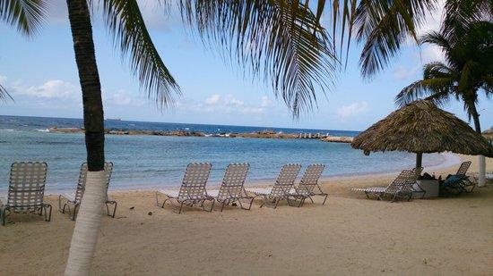 Holiday Beach Hotel and Casino: Hermosa pero llena de algas y coral
