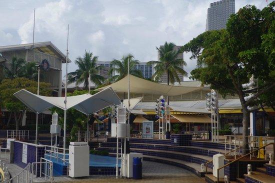 casino cruise bayside miami