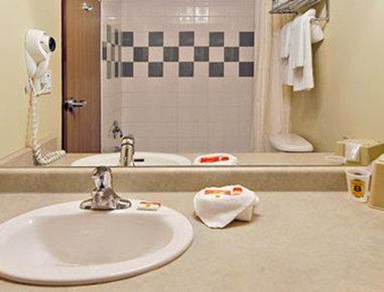 Super 8 Grimsby Ontario: Bathroom