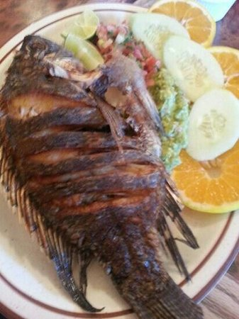 Landa's Mexican Restaurant: pescado durado