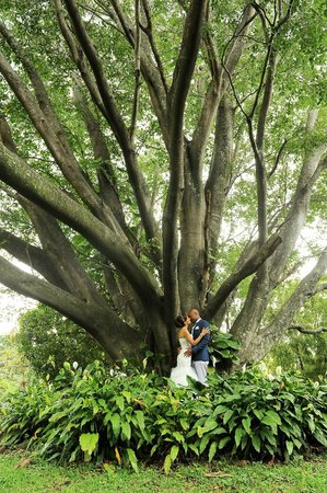Ringle Resort Hotel & Spa: Beautiful grounds!!!  Great for our wedding photos