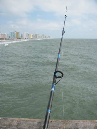 Springmaid Pier: My view for the day!