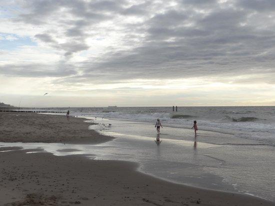 Stayokay Domburg: beach