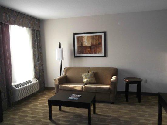 Homewood Suites by Hilton Fort Wayne : Living room area