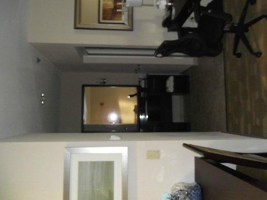 Homewood Suites by Hilton Fort Wayne : Sink outside of bathroom