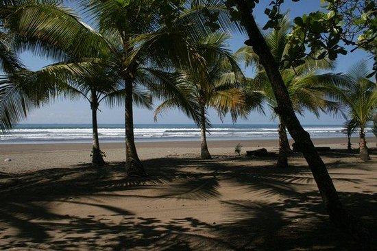 Hotel Playa Bejuco: Bejuco beach