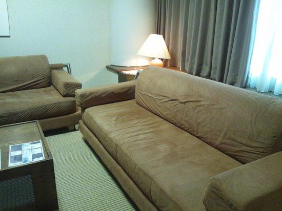 Northern Arc Resort : リビングルーム、人数が多いときにはこれがベットになると思われます