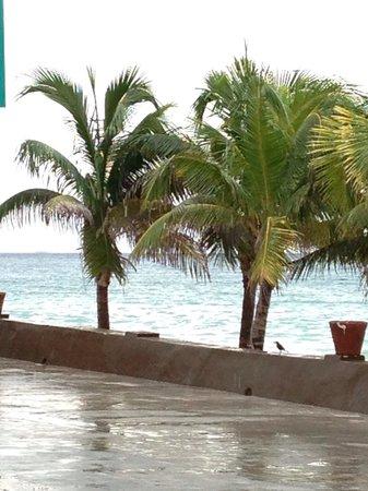 Fiesta margarita prox. Flamingo caribe