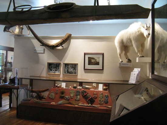 Trail of '98 Museum: Nature/native-type of display items