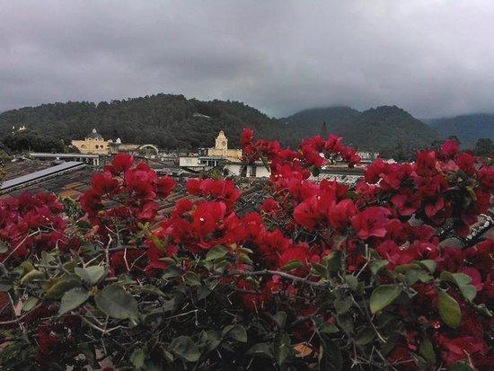 Hotel Meson de Maria: Rooftop view