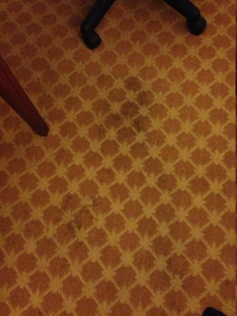 Country Inn & Suites By Carlson, Richmond West at I-64 : carpet stains
