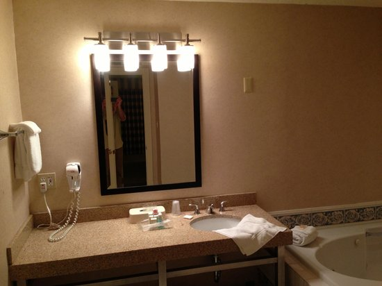 Holiday Inn Hotel and Conference Center Detroit - Livonia: vanity
