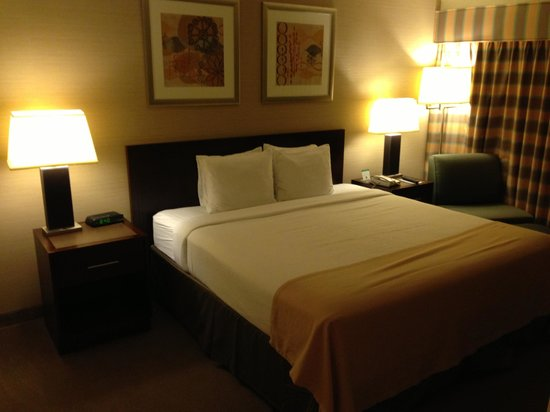 Holiday Inn Hotel and Conference Center Detroit - Livonia: nice bed!