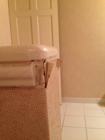 Holiday Inn Hotel and Conference Center Detroit - Livonia : pealing half-wall in the bathroom