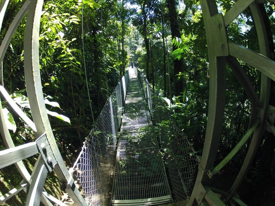 Arenal Hanging Bridges: Entrance to one of the bridges