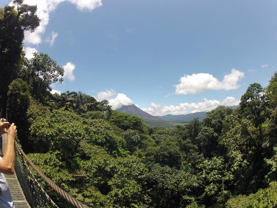 Arenal Hanging Bridges: View