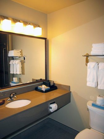 Best Western Plus Winnipeg West: Wash Room