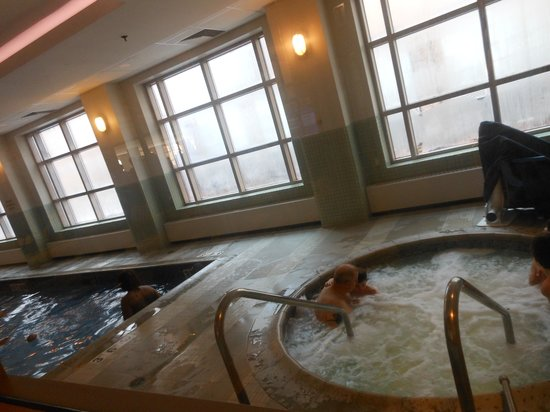 Embassy Suites by Hilton Chicago Downtown: Pool